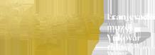 veliki logo
